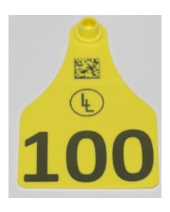 Cow Tags with Numbers +  Ranch Logo