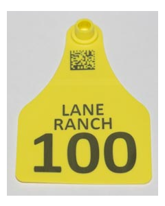 Cow Tags with Numbers + Ranch Name + Phone No.