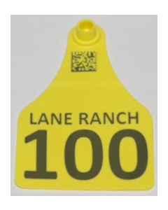 Cow Tags with Numbers + Ranch Name